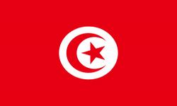 Туры в Тунис из СПб, <br> отдых в Тунисе