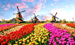 Туры в Голландию из СПб, <br> отдых в Голландии